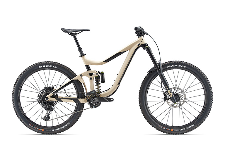 2019 Giant Reign SX 1 - medium